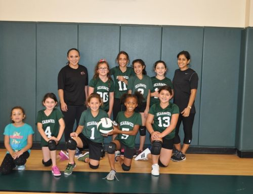 SSAL Elementary Girls Volleyball Championship