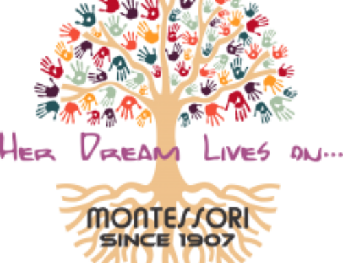 Montessori: The Elementary Years