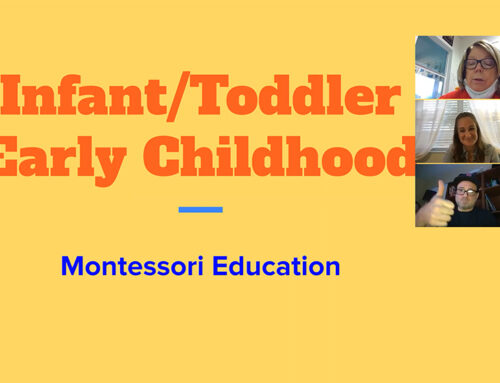 Montessori 101 with Judy Dempsey